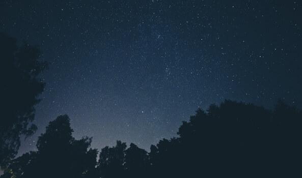 sky-night-space-trees-medium